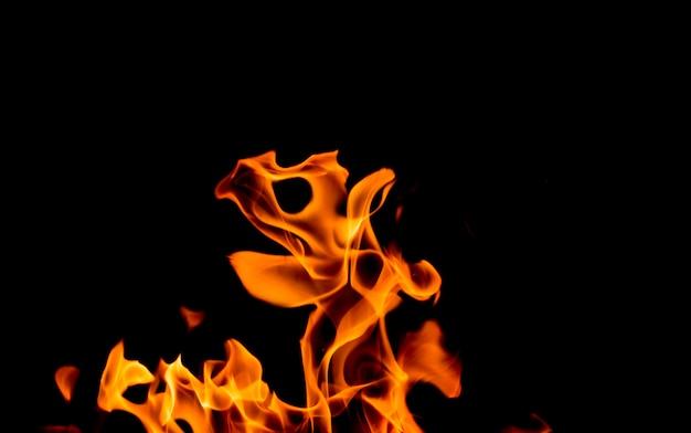 黒の背景に黄色オレンジ色の炎 Premium写真