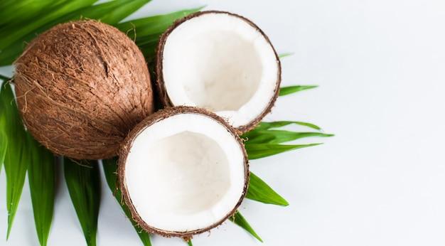 白い背景の上の緑の葉とココナッツ。 Premium写真