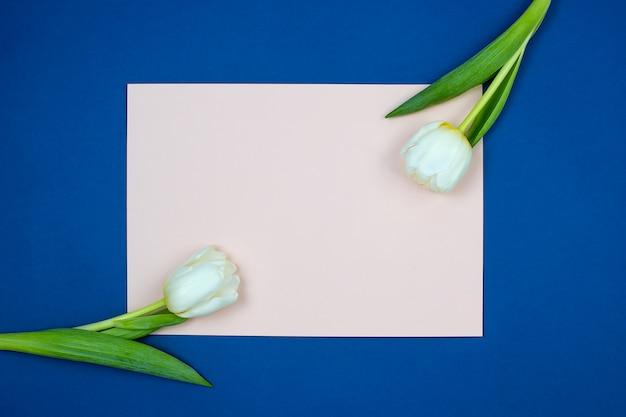 空白のピンクの紙のシートと青の背景に緑の葉と新鮮なチューリップの花 Premium写真