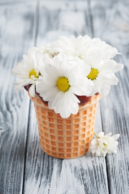 Свежие цветы ромашки в горшке на потертый деревянный стол Premium Фотографии