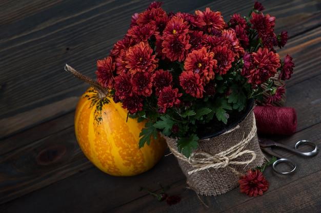 Горшок с красными цветами хризантемы Premium Фотографии