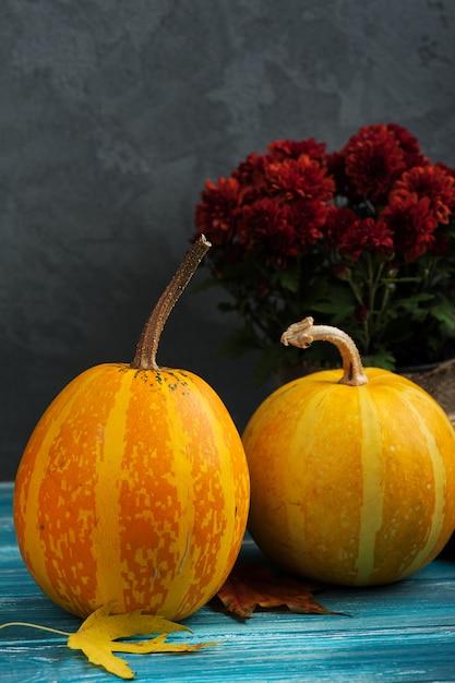 秋のカボチャ Premium写真