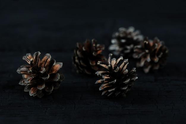 黒い木製の背景にマツ円錐形 Premium写真