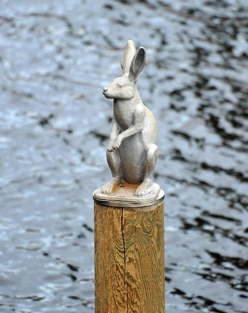 Памятник зайцу вокруг петропавловской крепости в санкт-петербурге Premium Фотографии