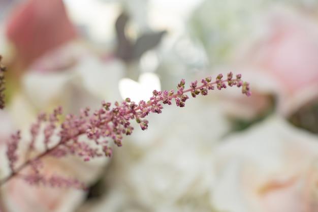 マクロ繊細なピンクの花の枝。結婚式の新鮮な花の装飾 Premium写真