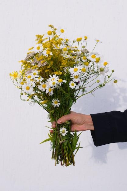 明るい背景に黄色の草原の花とヒナギクの美しい花束を持っている女性の手 Premium写真