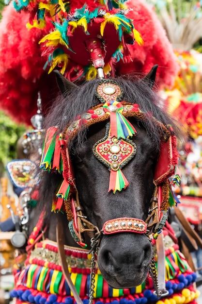 子供たちのための日曜日のパーティーで伝統的な装飾と色のシチリア人の馬 Premium写真