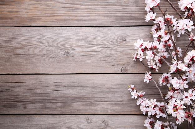 Ветви весны зацветая на серой деревянной предпосылке. Premium Фотографии