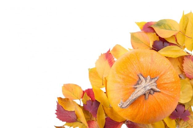 白い背景で隔離の葉とオレンジ色のカボチャ Premium写真