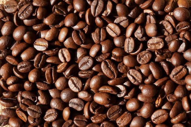 コーヒー豆の背景 Premium写真