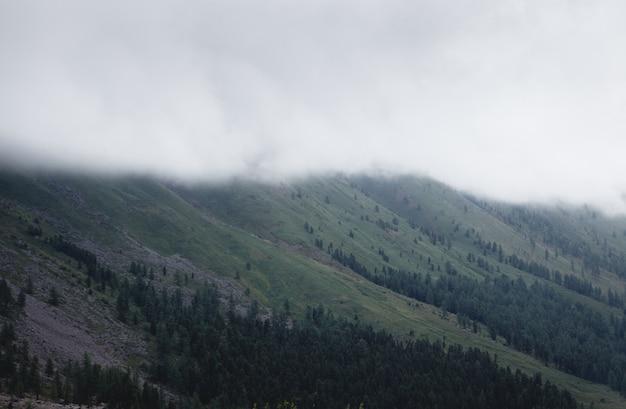 山林を覆う霧。緑の大気の山々 Premium写真