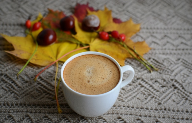 コーヒーカップメープル黄色の葉栗黄金色秋陽気日光朝コンセプトトーン Premium写真