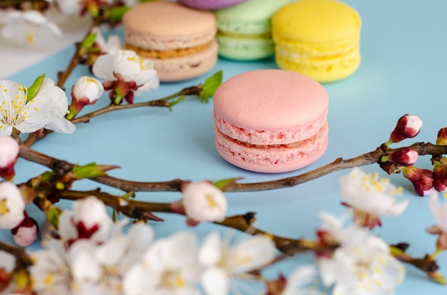 カラフルなフランスのマカロンまたはパステルブルーの咲く杏の花で飾られたマカロン Premium写真