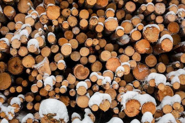 雪の森、木材の在庫でログイン Premium写真