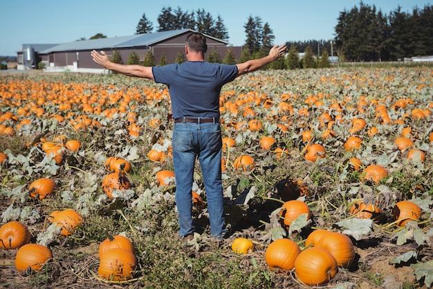 カボチャ畑に立って広げられた腕によって立っている農夫 無料写真