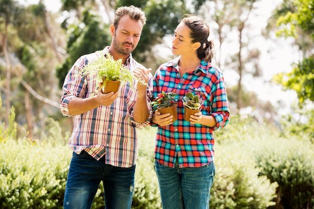 鉢植えの植物を保持している若いカップル Premium写真