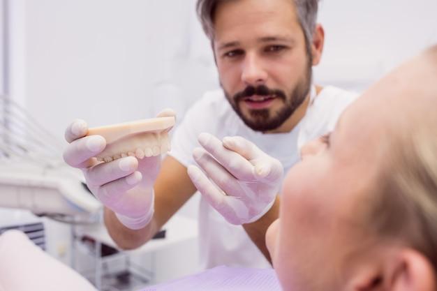 歯科医が患者に義歯モデルを表示 無料写真