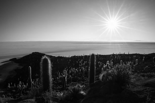 黒と白、ボリビアのウユニ塩原の太陽の星 Premium写真