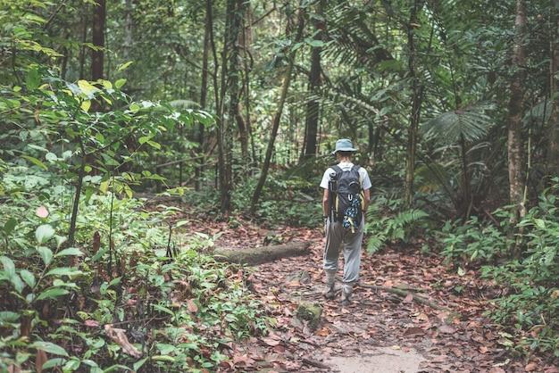マレーシア、ボルネオ島西サラワク州クバ国立公園の雄大なジャングルを探索するバックパッカー。 Premium写真