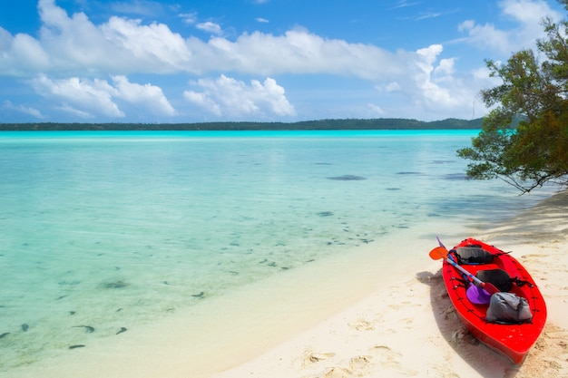カヌーで無人島に到達する Premium写真