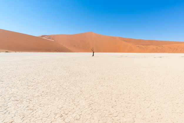 風光明媚なソーサスフレイとデッドヴレイ、雄大な砂丘に囲まれた粘土と塩の平原 Premium写真