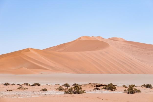 Соссусвлей намибия, величественные песчаные дюны. национальный парк намиб науклуфт, намибия Premium Фотографии