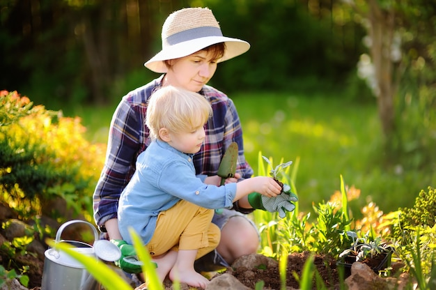 美しい女性と彼女のかわいい息子の夏の日に国内庭園のベッドで苗を植えること Premium写真