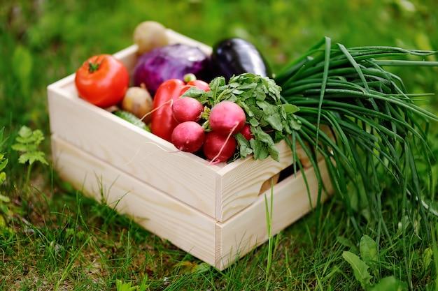 Крупным планом фото деревянный ящик со свежими органическими овощами с фермы Premium Фотографии