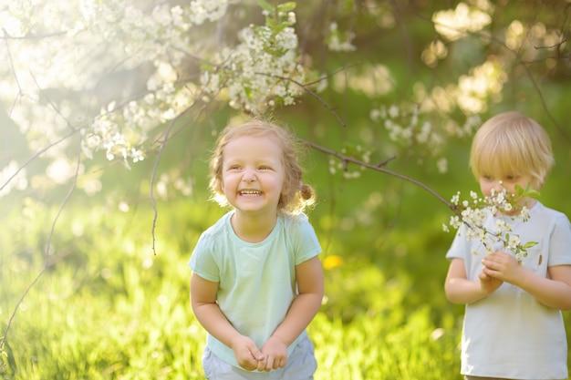 Симпатичные маленькие дети играют вместе в цветущий вишневый сад. Premium Фотографии
