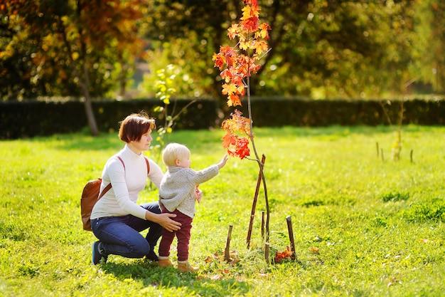 美しい中年の女性と美しい秋の木を見て彼女のかわいい小さな孫 Premium写真