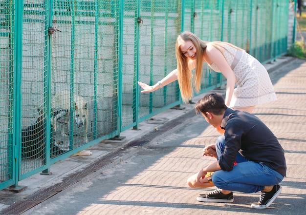 若い家族が犬の避難所でペットを探しています。 Premium写真