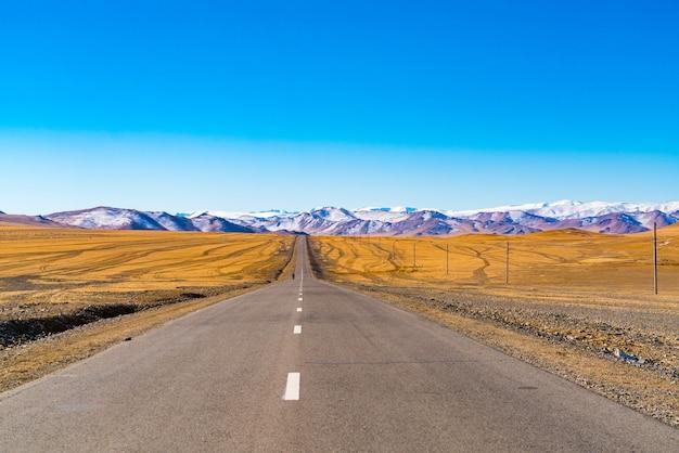 美しい山と夏のシーズンにモンゴルのウルギイで黄色の草原の田舎のアスファルト道路。 Premium写真
