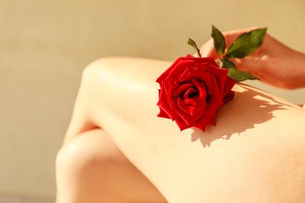 脚に赤いバラ。ローズと美しい女性の足。 Premium写真