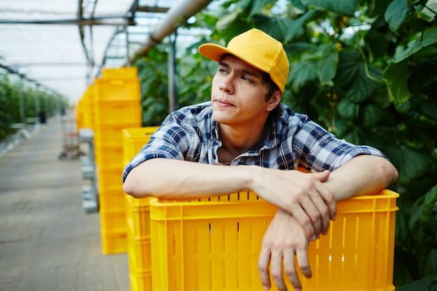 温室のプラスチックの箱のスタックの上に傾いて若い庭師 無料写真
