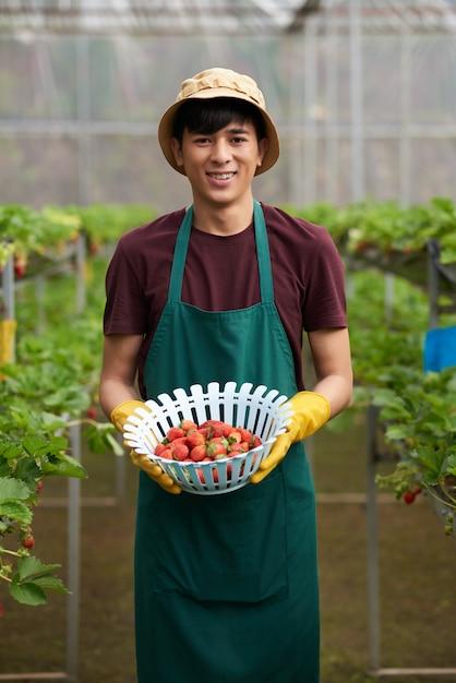 カメラに直面して、いちごのボールを保持している男性の農家のミディアムショット 無料写真