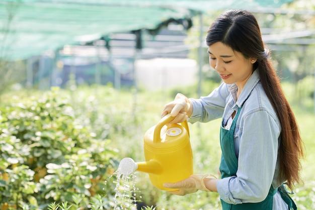 Садовник поливает растения Бесплатные Фотографии