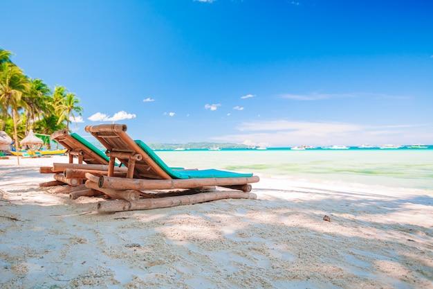 Кокосовая пальма на песчаном пляже Premium Фотографии