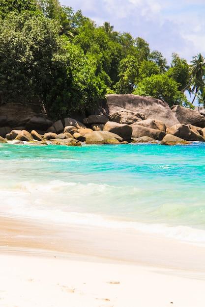セイシェルの美しいエキゾチックな熱帯のビーチ Premium写真