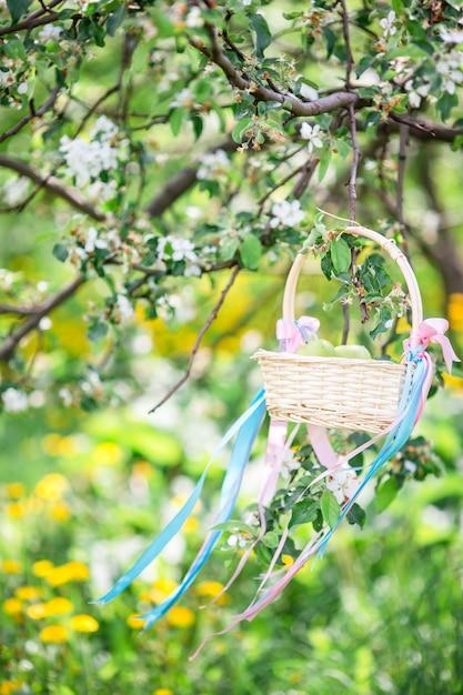 春の日に桜の花 Premium写真