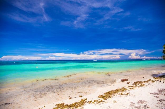 青緑色の水と白い砂浜のある完璧な熱帯のビーチ Premium写真