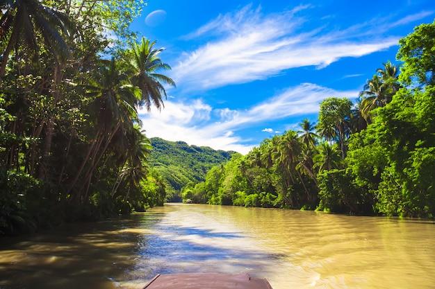 熱帯ロボック川、青い空、ボホール島、フィリピン Premium写真