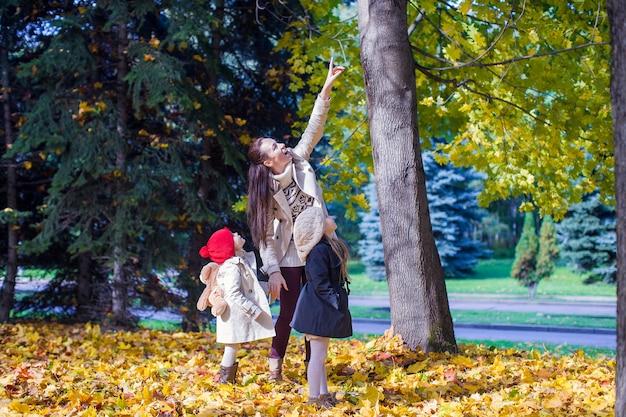 暖かい晴れた日に黄色の秋の森で魅力的な散歩を楽しんでいる若い母親と彼女の愛らしい娘 Premium写真