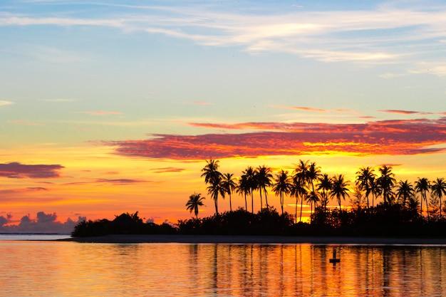 ヤシの木の暗いシルエットとインド洋の熱帯の島の夕日の素晴らしい曇り空 Premium写真