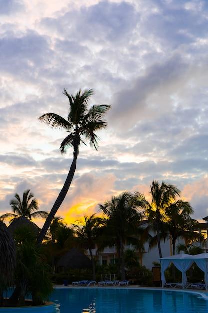 パームツリーシルエットと海のビーチのカラフルな夕日 Premium写真