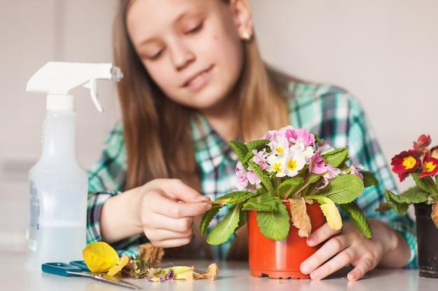 彼女の家の植物の世話をする少女 Premium写真