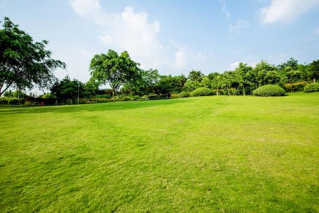 草原風景と緑化環境公園の背景 無料写真