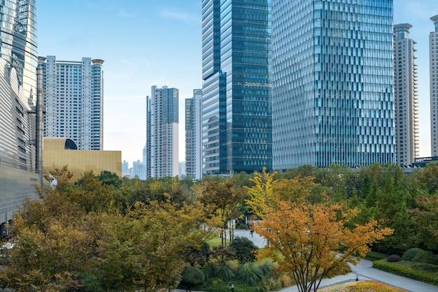 陸家嘴金融センターの芝生とオフィスビル Premium写真