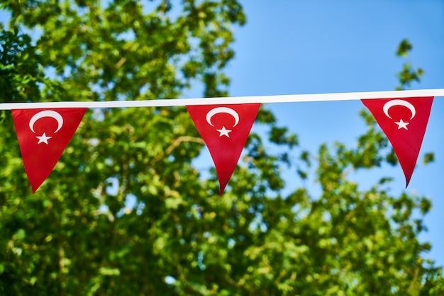 トルコの国旗と緑の葉 Premium写真