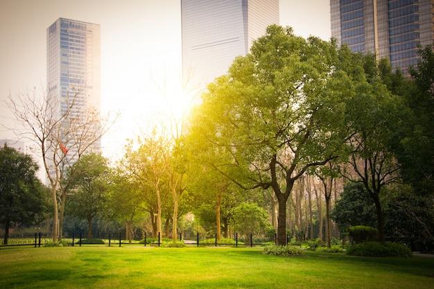 Парк в финансовом центре луцзяцзуй, шанхай, китай Бесплатные Фотографии