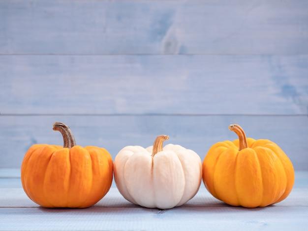 オレンジと白のカボチャ。ハロウィーンの概念に使用します。 Premium写真